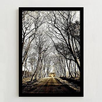 Art/Wall Decor - Framed Print - Road to Laurieston | west elm - tree photography, winter tree photography, framed tree lined road photography,