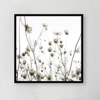 Art/Wall Decor - Framed Print - Summer Silhouettes | west elm - black and white floral art, black and white floral photography, framed black and white floral photograph,