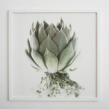 Art/Wall Decor - Clinton Friedman Wall Art Artichoke | west elm - artichoke art print, artichoke wall art, artichoke photography, framed artichoke photography,