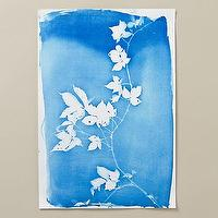 Art/Wall Decor - Virginia Creeper Cyanotype I Terrain - blue and white floral art, blue and white botanical art, blue and white vine patterned art,