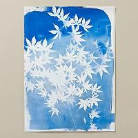 Art/Wall Decor - Japanese Maple Cyanotype I Terrain - blue and white floral art, blue and white maple leaf art, blue and white botanical art,