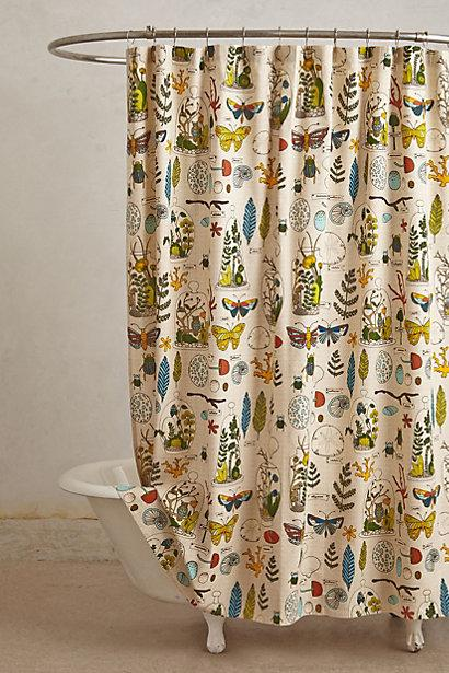 entomology shower curtain. Black Bedroom Furniture Sets. Home Design Ideas