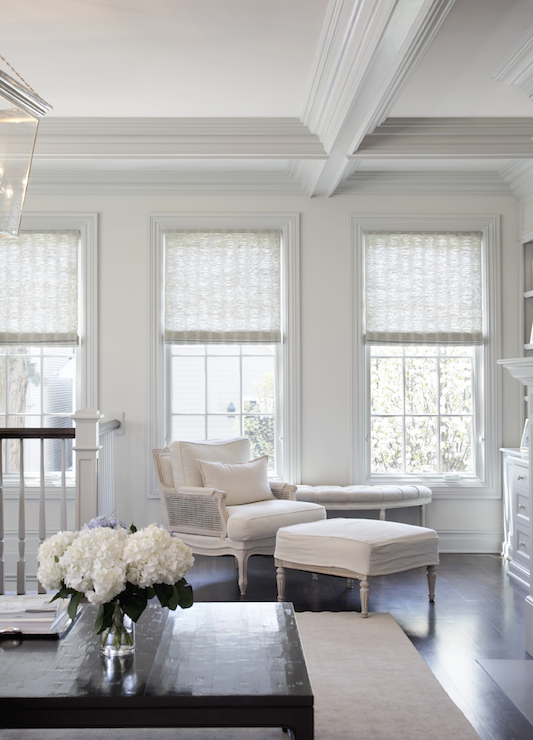 Gray Roller Shades Transitional Living Room Leo Designs Chicago