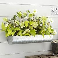 Decor/Accessories - Industrial Wall Planter | West Elm - galvanized steel wall planter, steel wall planter, galvanized trough planter,