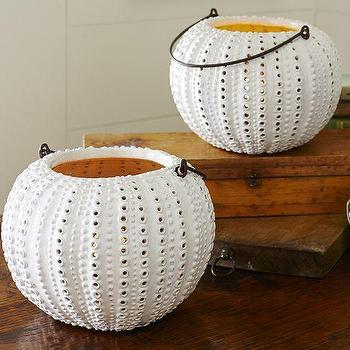 Decor/Accessories - Sea Urchin Ceramic Lantern | Pottery Barn - sea urchin candle lantern, sea urchin candle holder, sea urchin candle lantern,