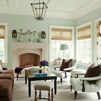 Brown and Green Living Room, Traditional, living room, Thornton Designs