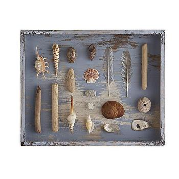 Art/Wall Decor - Ocean Curiosities Shadowbox | Wisteria - seashell shadowbox, shell shadowbox, blue shadowbox, distressed blue shadowbox, nautical shadowbox, beach themed shadowbox,