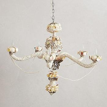 Lighting - Beachcomber Chandelier I anthropologie.com - seashell chandelier, seashell encrusted chandelier, shell chandelier,