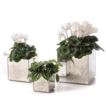 Beds/Headboards - Mirror Orchid Pot Set, Plain Silver I Bliss Home and Design - mirrored planter, mirrored plant pot, antiqued mirrored plant pot,