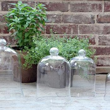 Decor/Accessories - Glass Cloche Bell Jar | HomeDecorators.com - glass bell jar, glass cloche, bell jar,