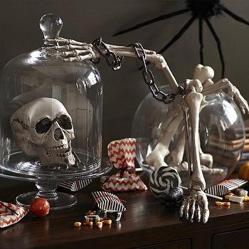 Miscellaneous - Bones Body Parts | Pottery Barn - fake bones, decorative bones, halloween skull and bones,