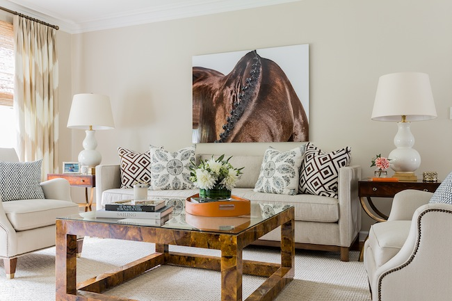 Tortoise Shell Coffee Table Transitional Living Room