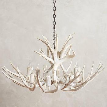 Lighting - Shed Antler Chandelier I Anthropologie - antler chandelier, white antler chandelier, deer antler chandelier,