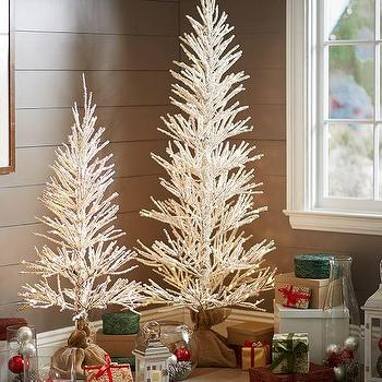 Miscellaneous - Lit Frosted Trees I Pottery Barn - frosted christmas trees, white christmas tree, sparkling white christmas tree,
