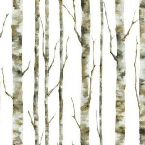 York ENCHANTED FOREST BS5334 Wallpaper