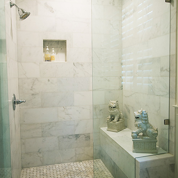 Shower with Foo Dogs, Transitional, Bathroom