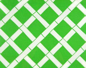 Bright Green And White Imperial Trellis Pattern Fabric