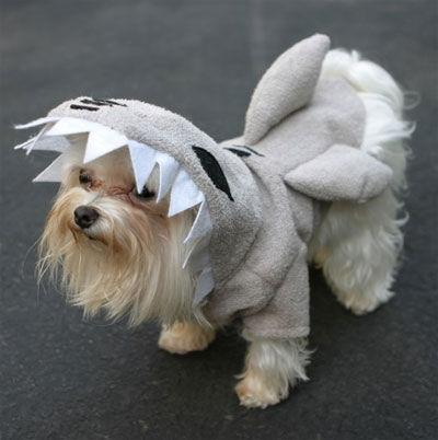Shark Fin Dog Costume Shark Fins Pajama Pal Dog