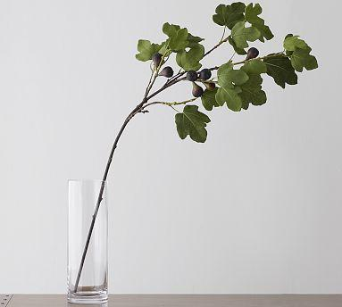 Fig Statement Branch Pottery Barn