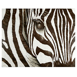 Abstract Zebra Canvas Art