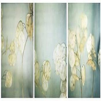 lunaria triptych signed fine art photograph by aliciabock on etsy