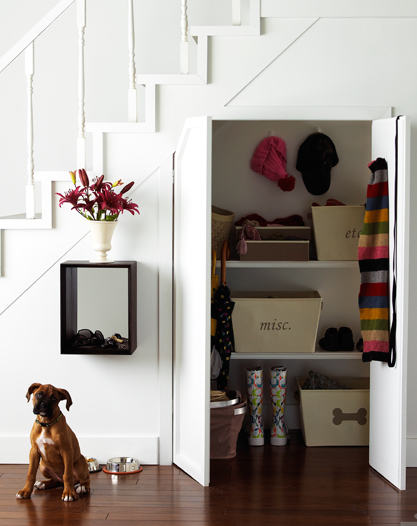 Under The Stairs Closet, Transitional, closet