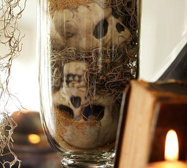 Mini Skull Vase Filler Pottery Barn