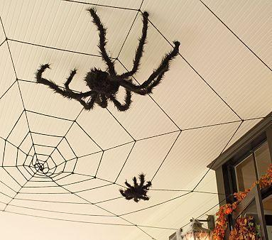 Ceiling Web Amp Fuzzy Spiders Pottery Barn Kids