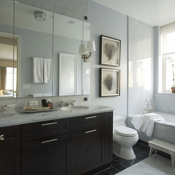 Framed Sea Fan, Transitional, bathroom, Willey Design