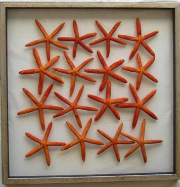 Mecox Gardens - Large Framed Floating Starfish Detail