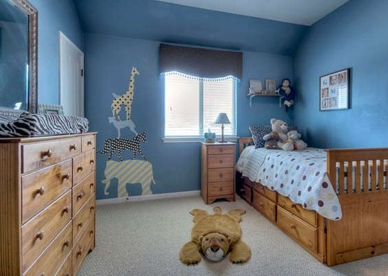 Boy's nursery with animal theme