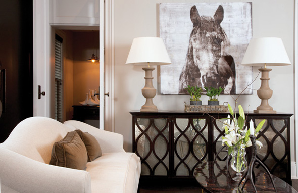 Mirrored Cabinet Transitional Living Room Capital Style