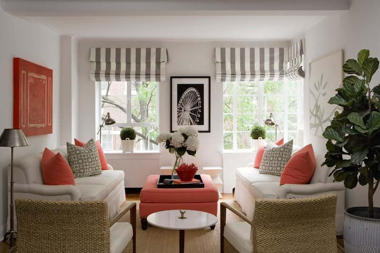 Coral and gray rugs design ideas Shades of gray for living room