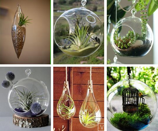 Hanging Glass Terrariums A Bubble Garden In The Sky Roundup