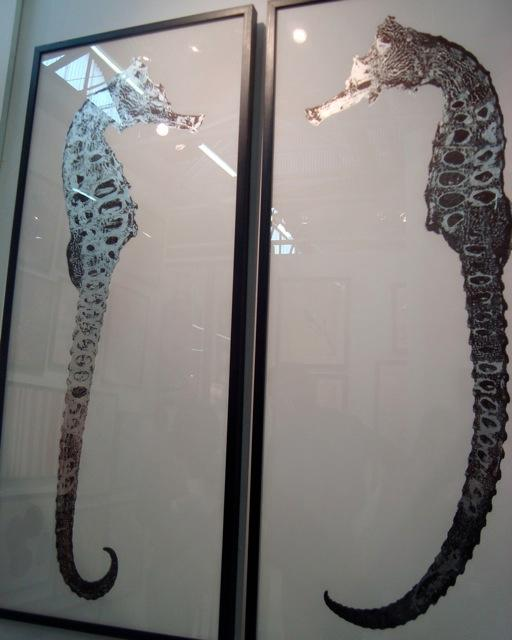 rumana seahorse art silverleaf natural curiosities