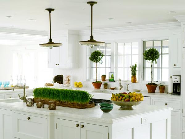 Topiary Design Ideas