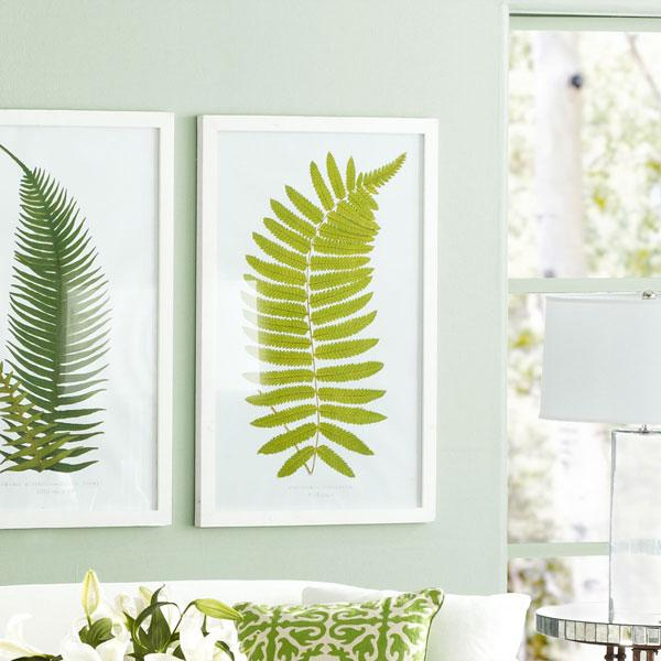 Perennial Fern Prints â?? Hawaiian - Wall Art - Wisteria