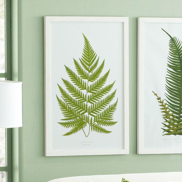 Perennial Fern Print - English - Wisteria