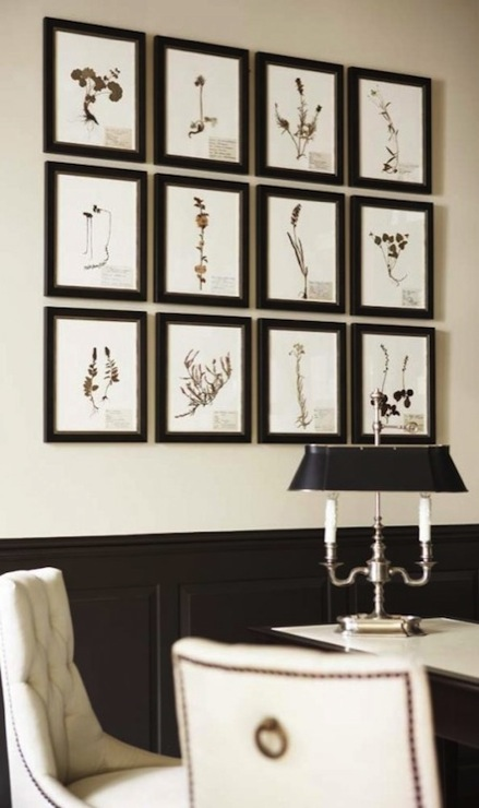 Superieur Ivory U0026 Black Office Design With Ivory Walls Paint Color, Black Chair Rail  U0026 Wainscoting, Botanical Art Gallery In Black Frames And Ivory Baker Tufted  ...