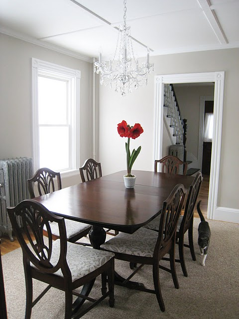 shield back dining chairs traditional dining room martha stewart