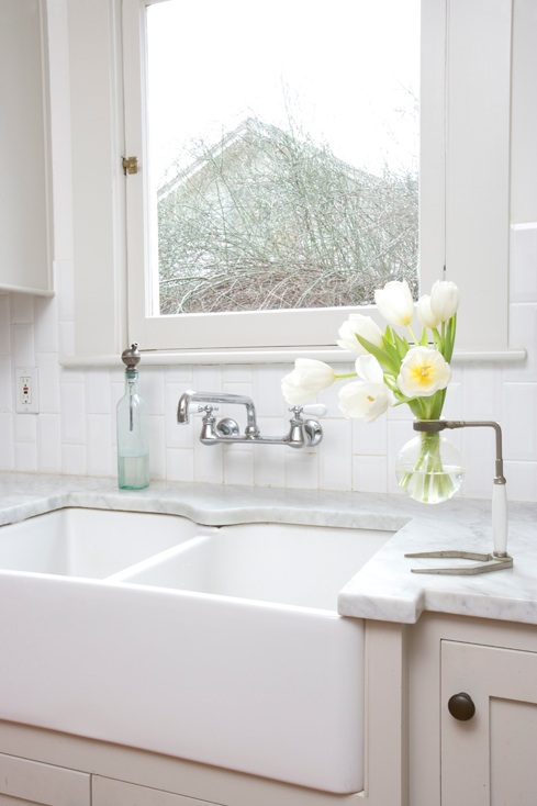 Dual Farmhouse Sink