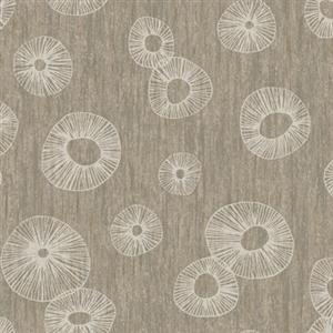 Curiouser & Curiouser! Wallpaper in Tan by York