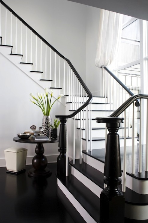 black stair railing transitional entrance foyer lda architects. Black Bedroom Furniture Sets. Home Design Ideas