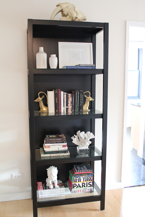 Black Bookcase Design Ideas