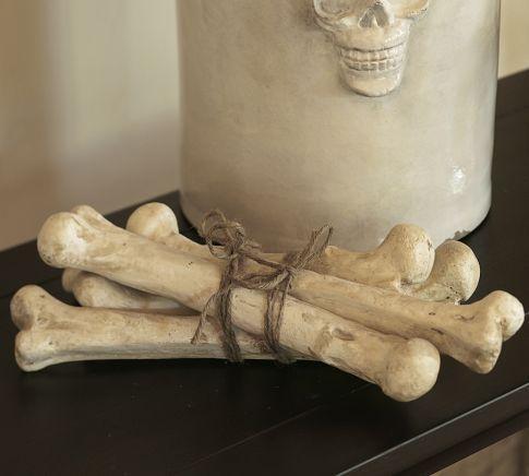 Bones Vase Filler Pottery Barn