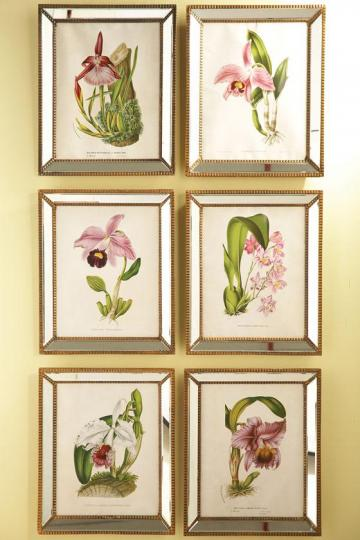 Home Decorators Collection Orchidees Orchid Wall Art - Set of 6
