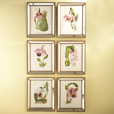 Orchid Wall Art Set of 6 Look 4 Less