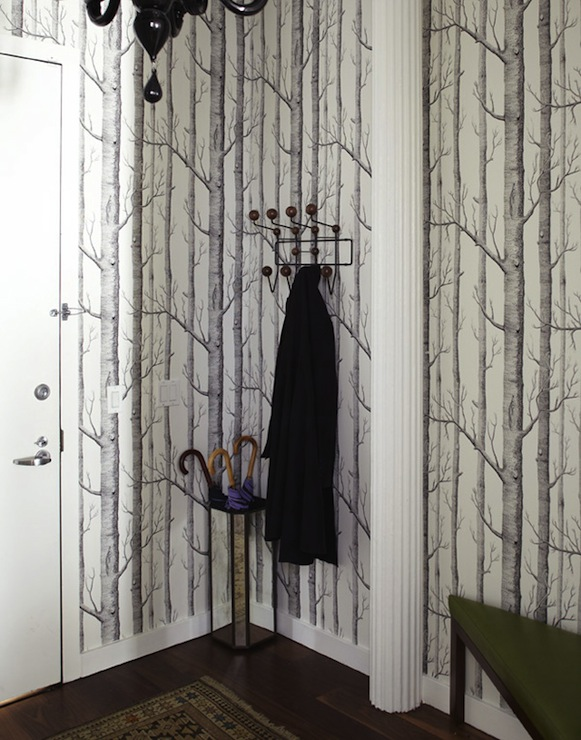 Cole And Sons Wallpaper Design Ideas