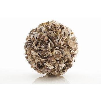 ARTERIORS Oyster Shell Sphere, Wayfair