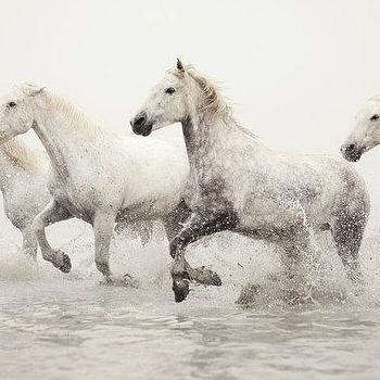 White Horses Running by EyePoetryPhotography I Etsy